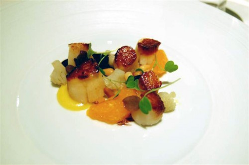 scallops medium 500x332 The French Laundry   12/23/09