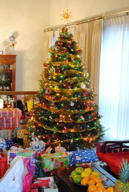 tree Christmas 2010   12/25/10