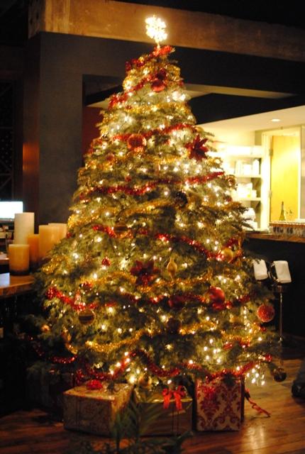 tree Fraiche   12/16/10